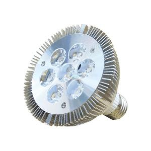10W PAR30 LED Spotlight Bulb